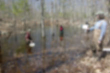 VPA documenting a vernal pool
