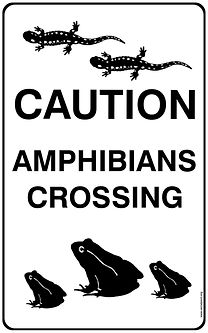 amphibin crossing sign