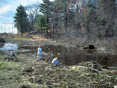 vernal pool damaged by pipeline project