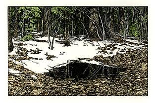 Venal Pool by Abigail Rorer