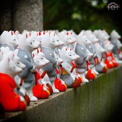 Miniature fox statues.
