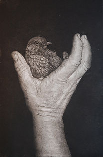 Bird_in_the_Hand_-_etching_with_icing_su