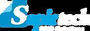 Sapirtech_logo.png
