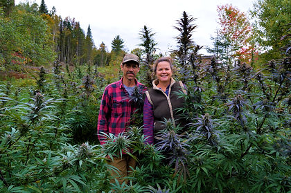 Mom and Dad in plants.JPG