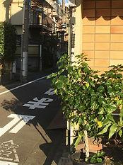 waseda_015.JPG