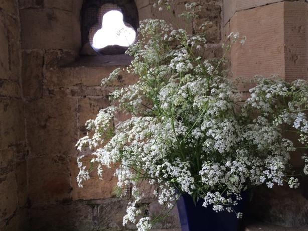 DIY bucket of 'filler' flowers