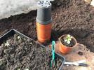 Set up for a cut flower growing workshops