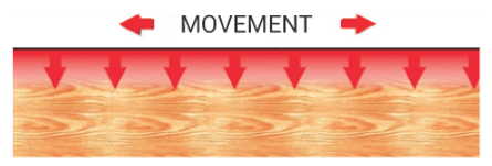 Movement-1.png