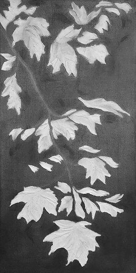 Maple 2