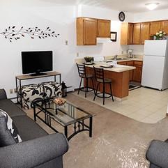 Mogadore Livingroom/Kitchen