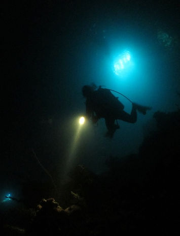 Night Diver Certification