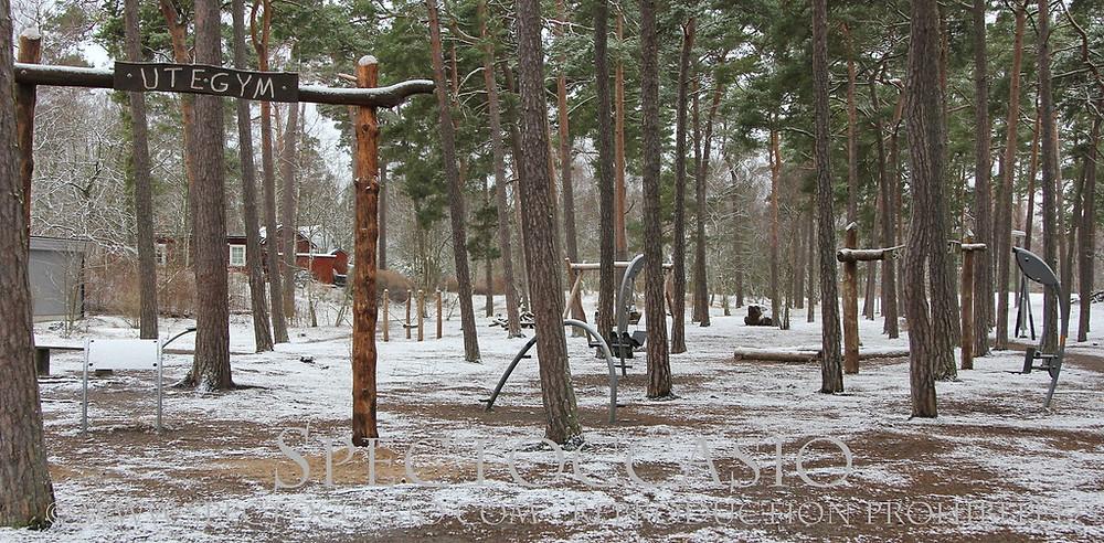 Sydkusten, Skåne, Ystad, motionslinga, utegym, lekplats, sandskogen, naturreservat