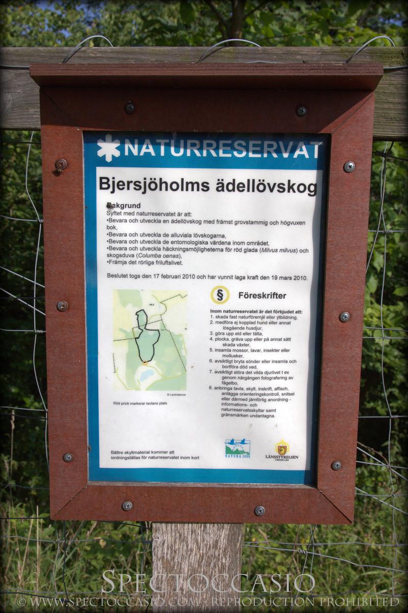 Bjersjöholms Nature Reserve Ystad