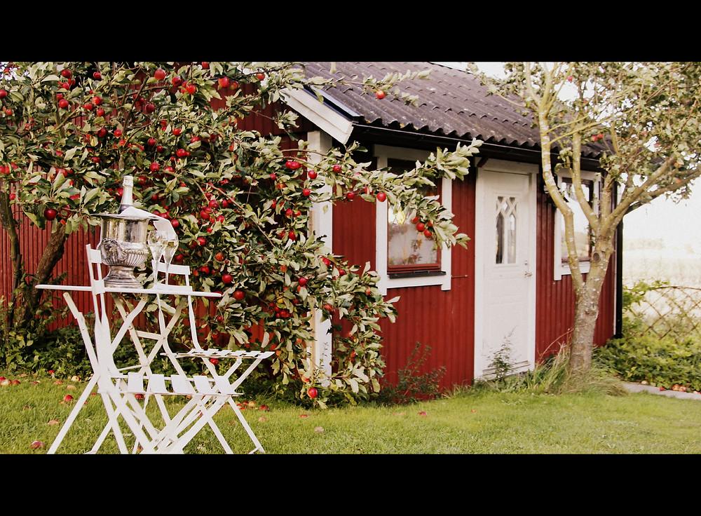 Sydkusten Skåne Pillehill Sydkustens Brasserie and Winebar Äpplekriget