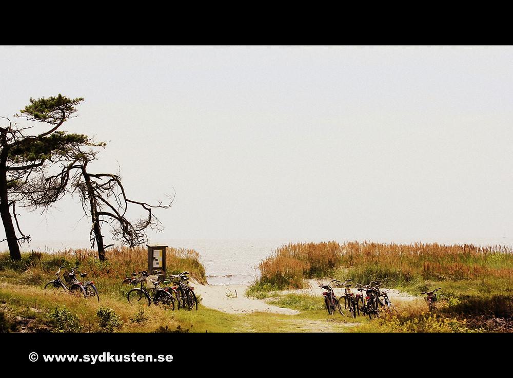 Sydkusten Skåne Hagestad beach Ystad Österlen