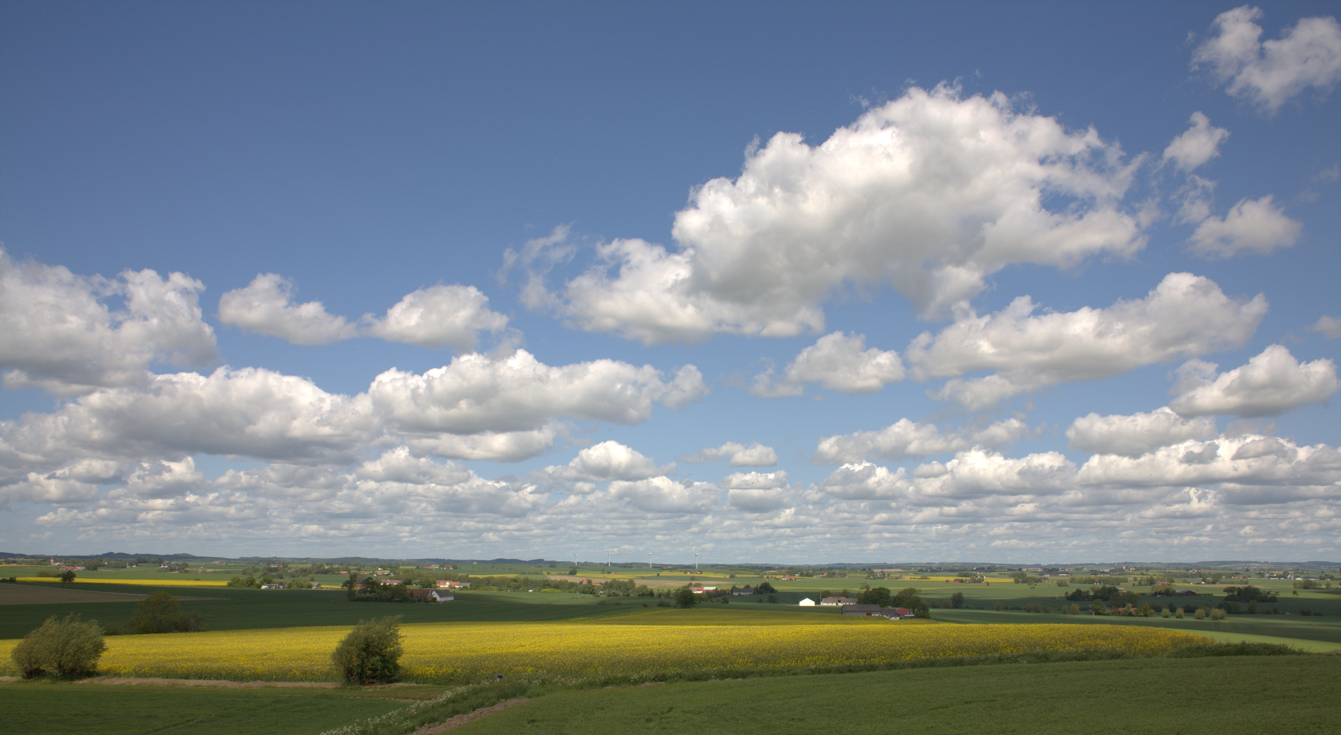 Sydkusten Skåne öppna landskap