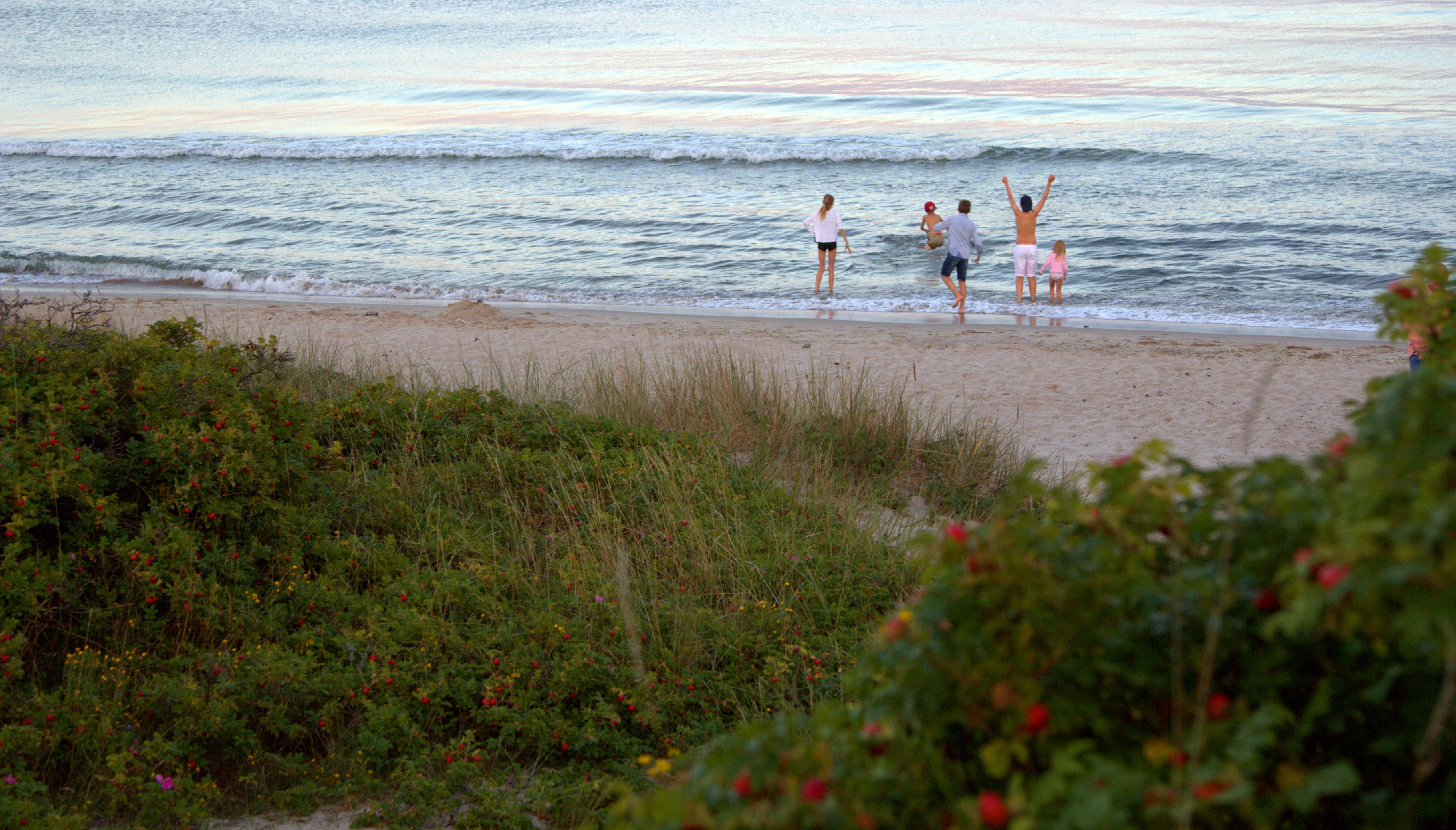 Sydkusten Skåne strand bad
