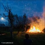 Festival of lights - Österlen Lyser