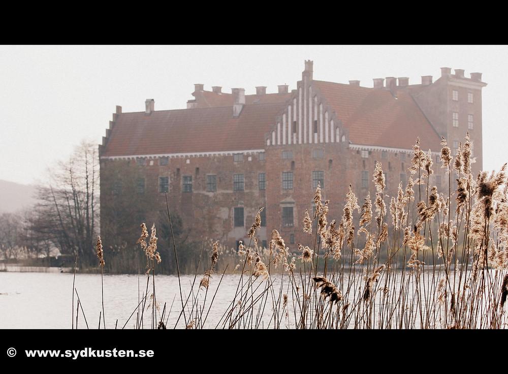 Svaneholm castle Skurup Skåne forest anemone
