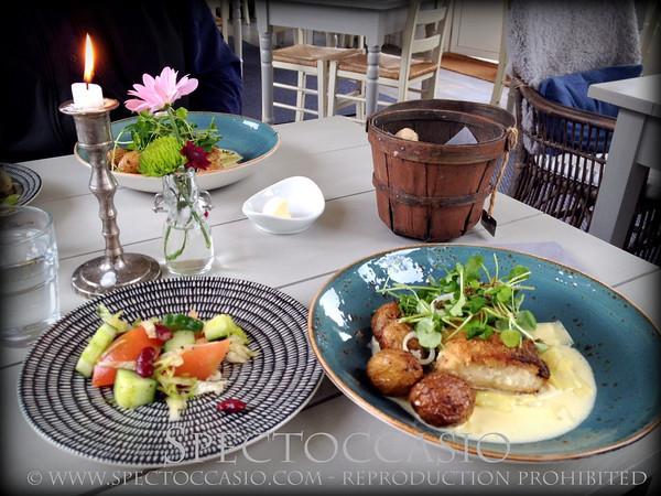 Sydkusten.se Hotell Mossbylund Dagens lunch äta sydkusten Skåne