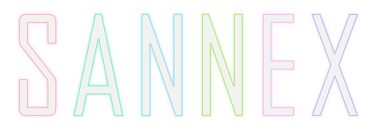 Sannex_2020 colorlogo.jpg
