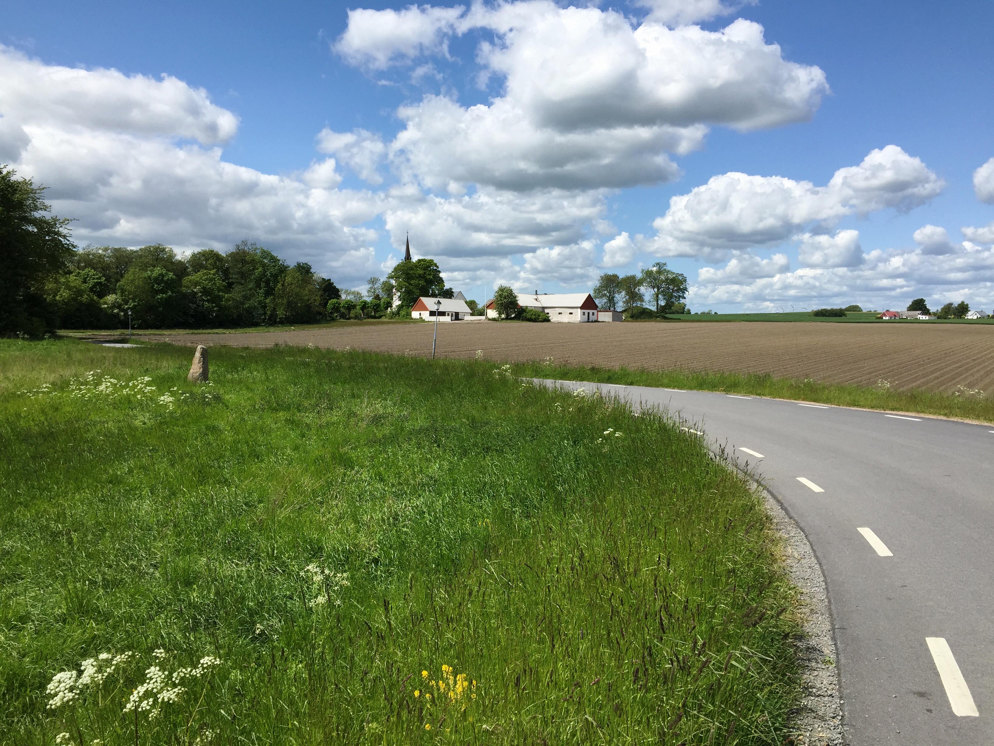 Sydkusten Skåne runsten