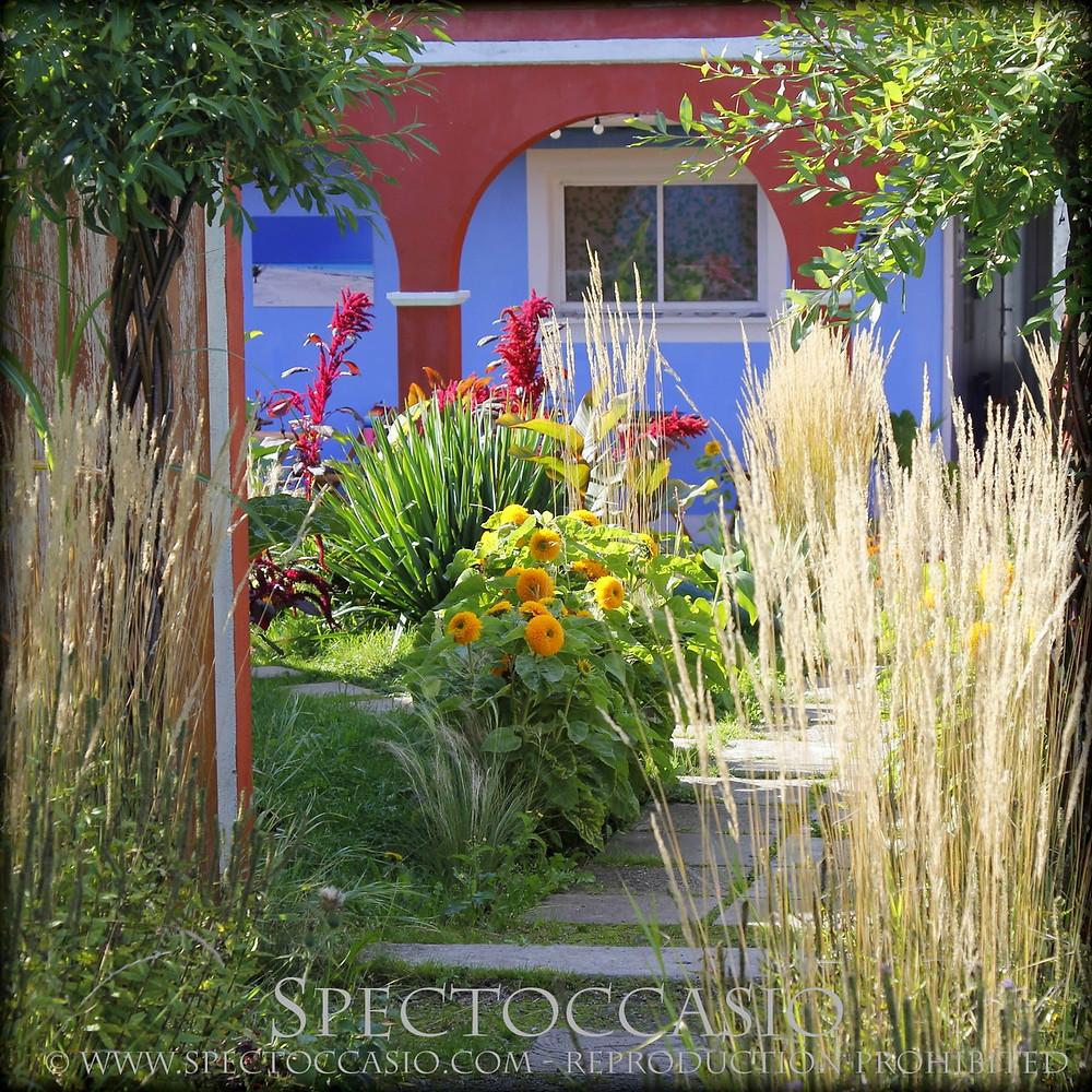 Little Gardens coffee Skåne