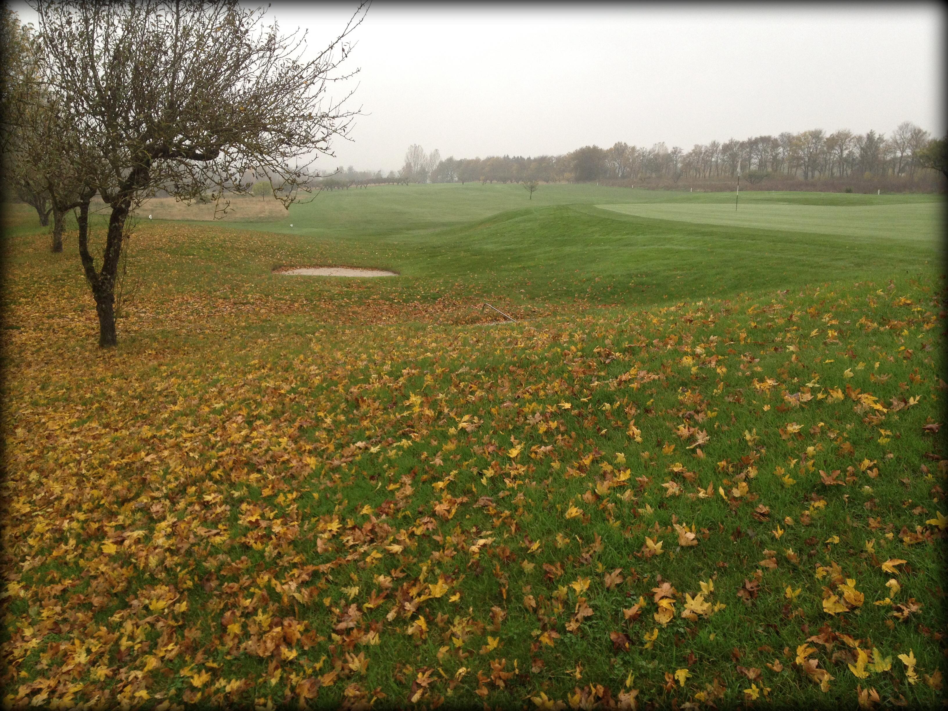 Sydkusten Skåne Abbekås Golfklubb