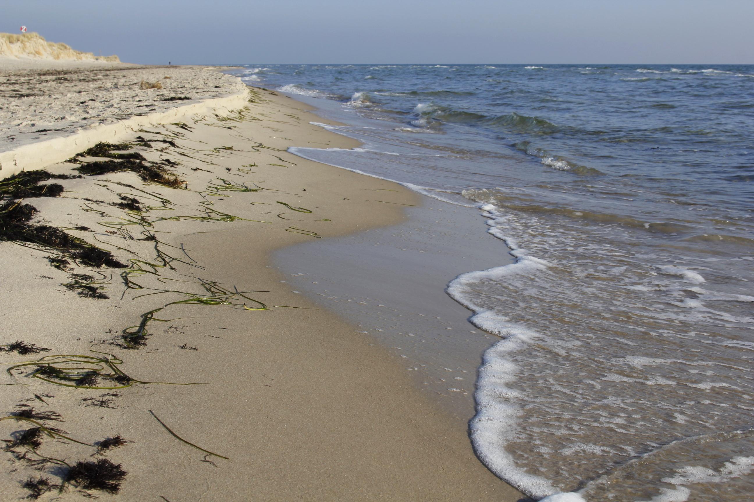 Sydkusten Skåne Österlen Sandstrand