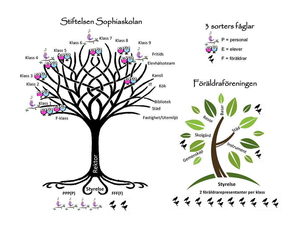 Sophiaskolans_organisation_vs_föräldrafö