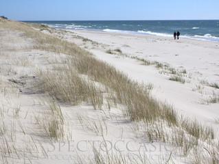 Vandra på vita sandstränder utmed den skånska Sydkusten