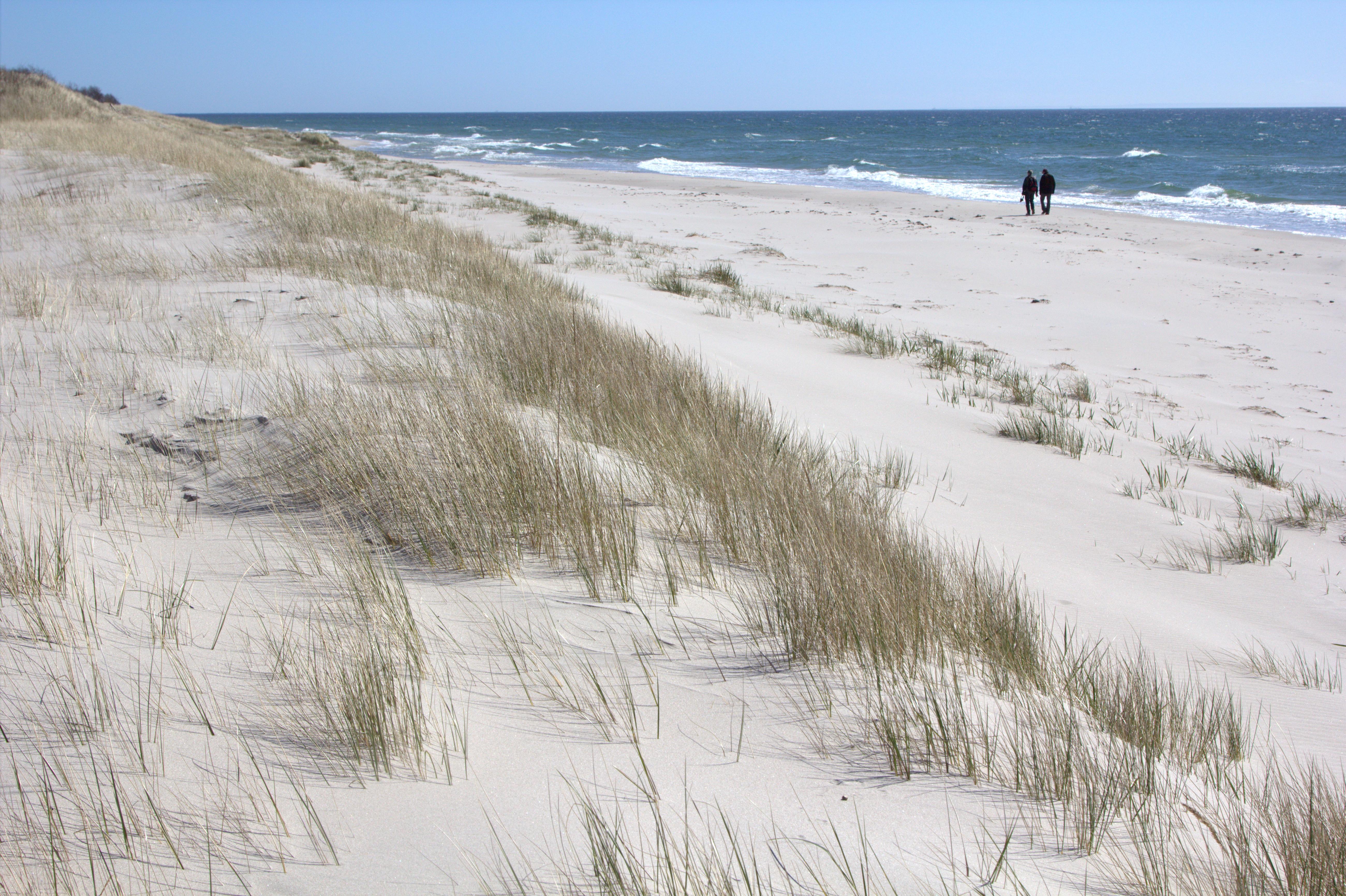 Sydkusten Skåne Sandhammaren strand