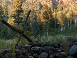 Logan and the Fellowship Concept