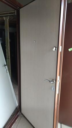 Дверь со светлой панелью
