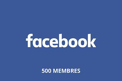 500 membres de groupe Facebook