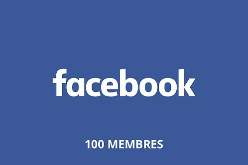 100 membres de groupe Facebook