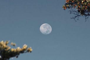 moon-in-the-sky-3284294_edited.jpg