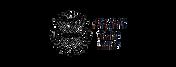 STT-Transparent-720x274.png