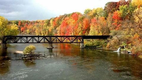 river bridge2.jpg