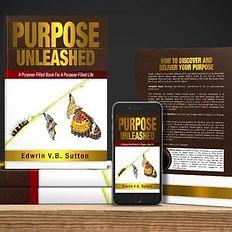 Pastor Edwrin Sutton Purpose Unleashed