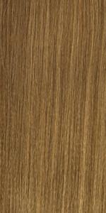 Light Chestnut Brown