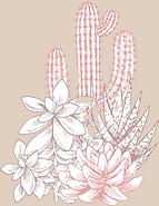 Cactuses_edited_edited_edited_edited.png