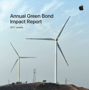 Green bonds - a real alternative