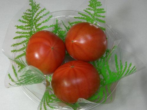 フルーツトマト5kg