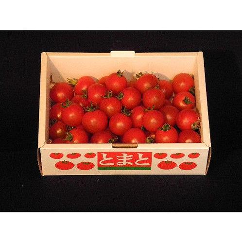 フルーツミニトマト500g
