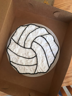 Volley Ball (19 cc)