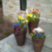 Spring Flower Pot