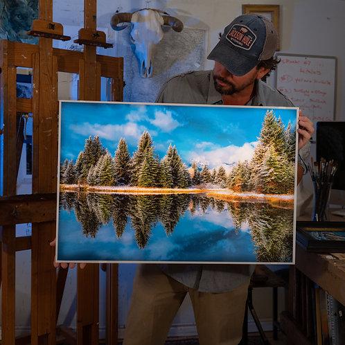 Pine Reflection at Schwabacher Landing