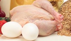 frozen Chicken for sale