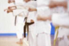 Karate%20Practice_edited.jpg